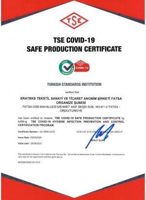 TSE Safe Production